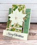 Vanilla Poinsettia Card